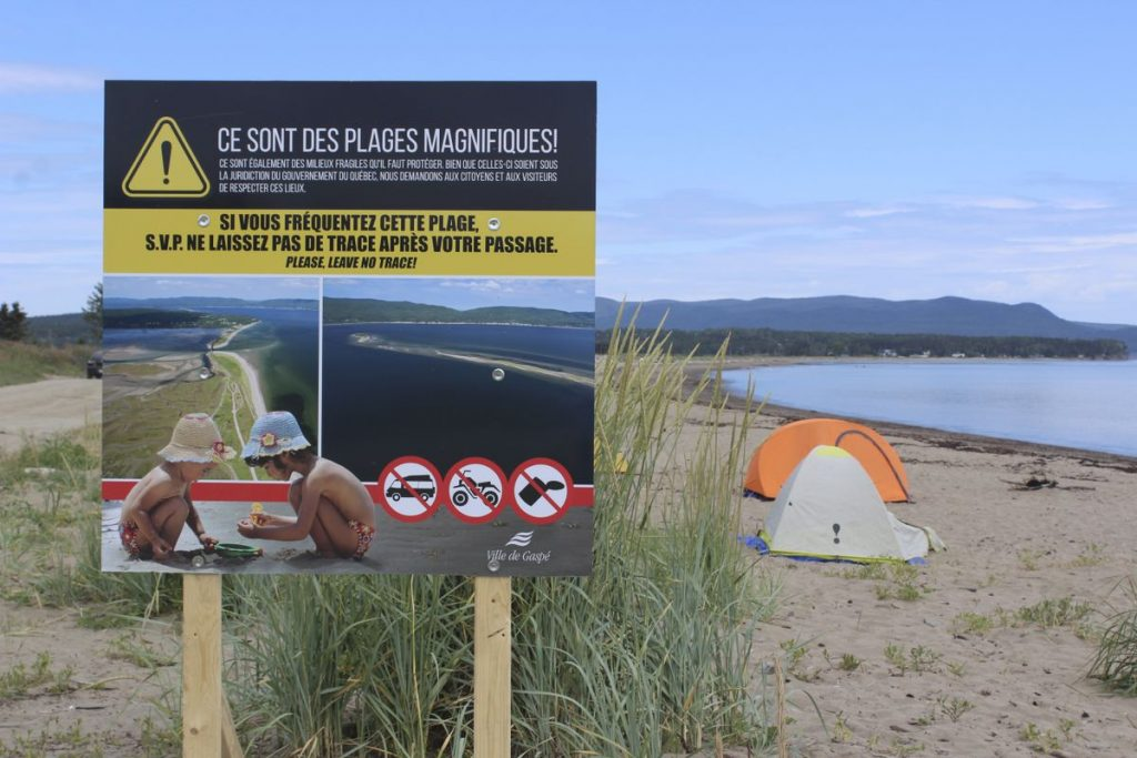 Wild Camping: Gaspé Do Your Homework |  Sew areas  News |  The show