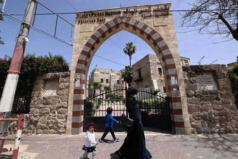À Gaza, les souvenirs d'oliviers de Napoléon noyés dans le béton du présent