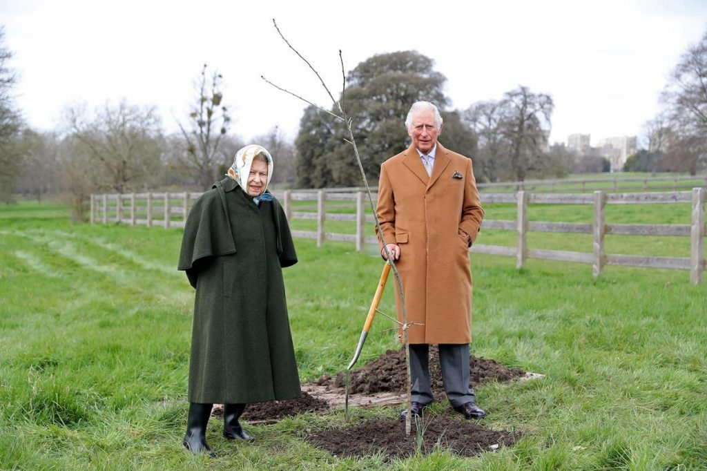 United Kingdom - Lessons of the Queen were invited to plant trees