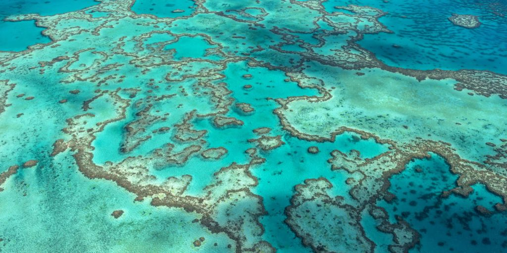 Australia receives one more recovery from UNESCO