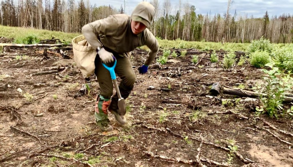 Antoine Moussa breaks the world record for most trees planted in 24 hours    Eastern Quebec    news    the sun