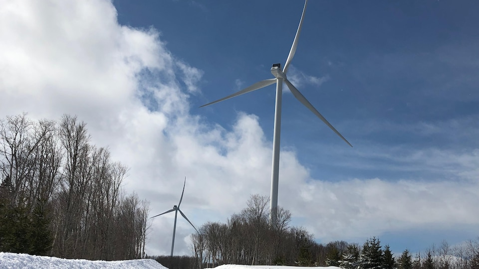 Two wind turbines at the Nicholas Rio wind farm