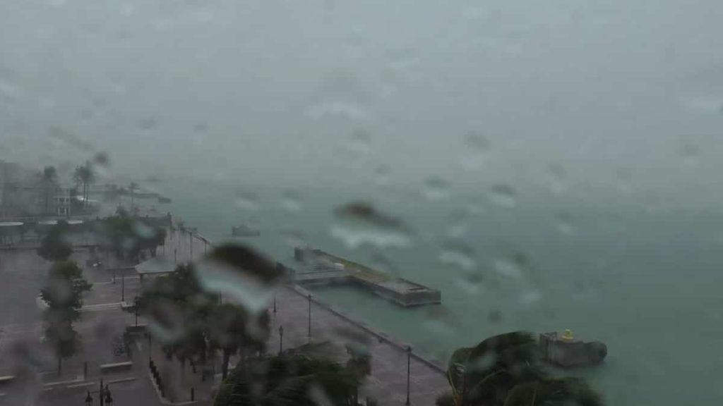 Tropical Storm Elsa heads straight to Tampa