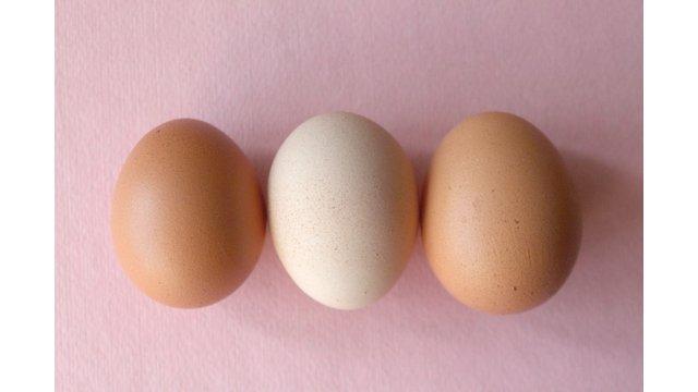 egg_ok_603e1a24f3d88.jpg