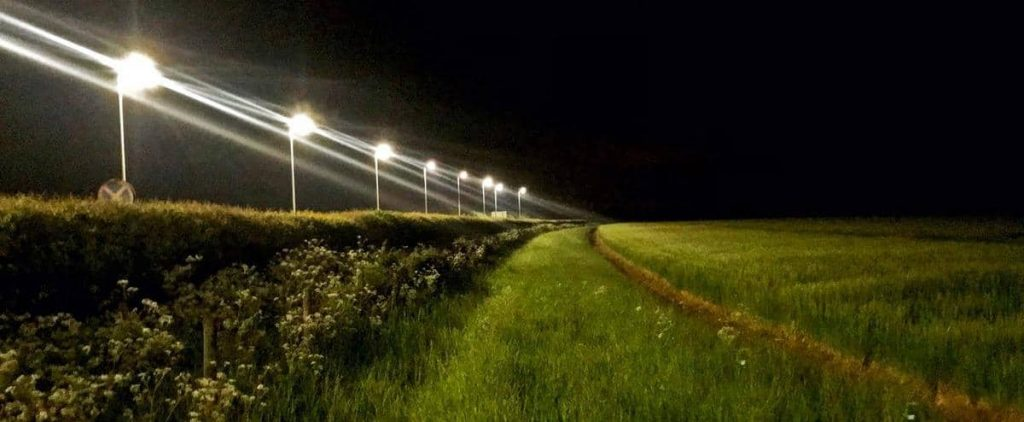 The number of larvae decreased due to the light of street lighting (study)