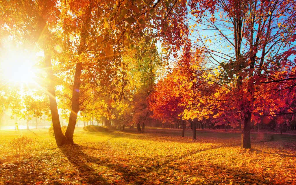 Why did the autumnal equinox occur on September 22 this year?