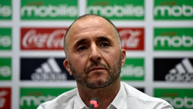 Belmadi is back on the charge