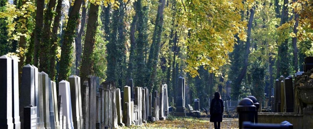 Germany: Protest after neo-Nazis buried in Jewish musicologist's grave